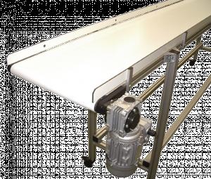 imgp0049-300x255